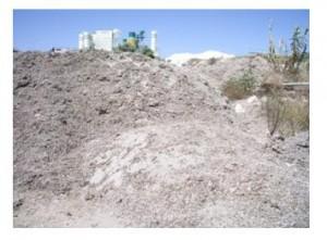 Posidonia acumulada durante los últimos 5 años en el ecoparque de Benissa. Se aprecia la gran cantidad de arena almacenada